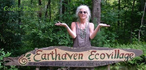 Permaculture Community in Asheville North Carolina since Paul Caron and Val initially constructed in 1994